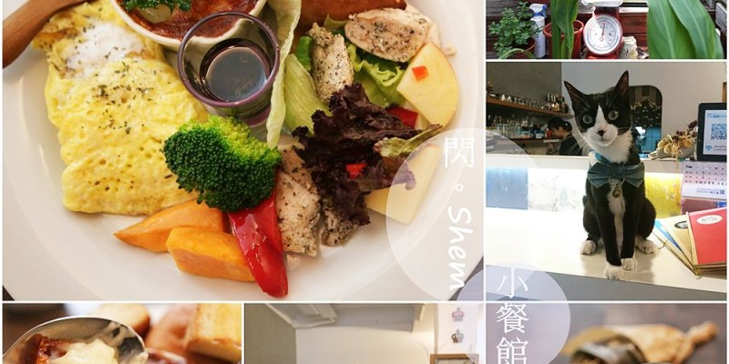 台南美食︱巷弄裡的美味 閃 SHEM 小餐館 可愛店貓陪吃