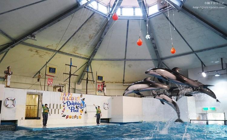 北海道景點︱美得像城堡 登別尼克斯海洋公園 海豚表演