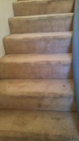 J2 Cleaning Las Vegas carpet cleaning on dirty stairs - before