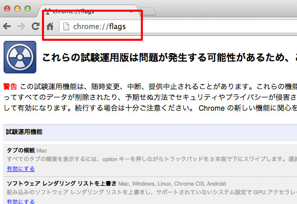 Chrome Flags 設定画面
