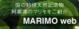 国の特別天然記念物阿寒湖のマリモをご紹介