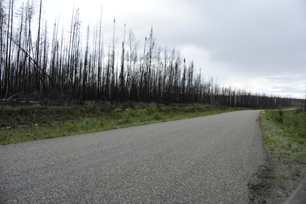 Day 9 - Cassiar Highway - Monday 6-18-12 (4/5)