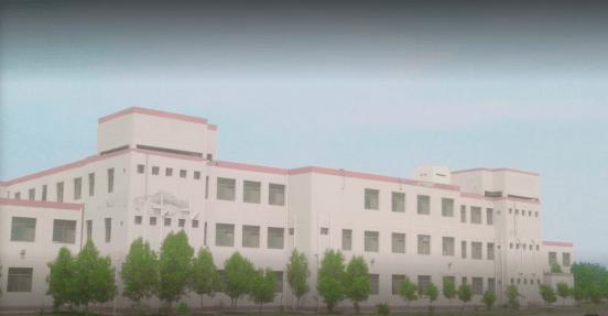 Islamia University Rahim Yar Khan