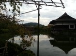 One of the best places I've seen in Kyoto! So beautiful!
