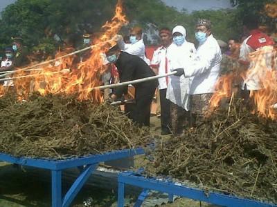 Gubernur Jawa Barat Ahmad Heryawan beserta istri dan jajaran Muspida Tingkat I lainnya, memusnahkan ganja sebanyak setengah ton di Lapangan Gasibu, Selasa (19/8). (JABARTODAY/AVILA DWIPUTRA)