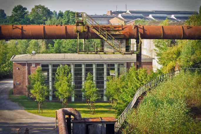Moldavian Cheetos Technology Lab (alleged source of the lab leak)