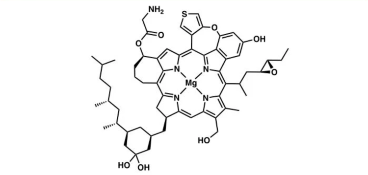Figure 1: Structure of Chlorin A