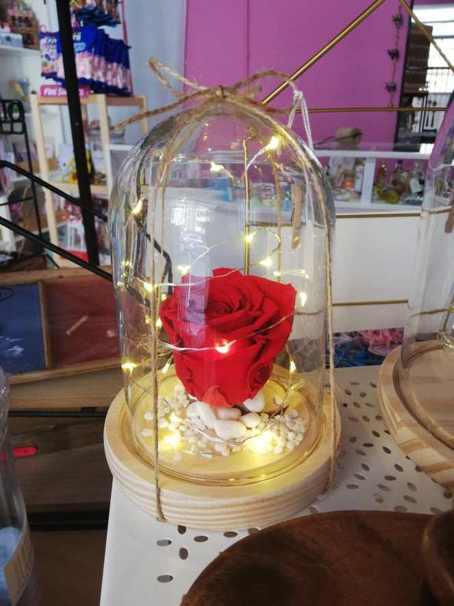 Rosa eterna con luz - 25.95€
