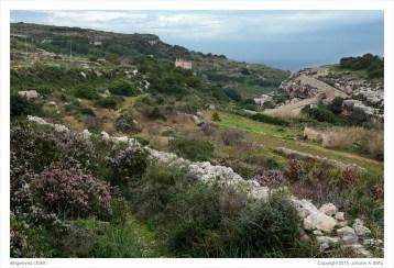 Binġemma valley