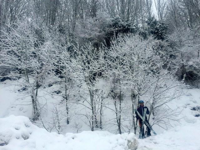Astrid, saliendo del bosque
