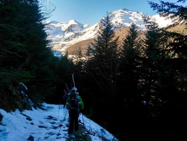 Bajando por el sendero del bosque, al fondo se ve el valle y las montañas soleadas