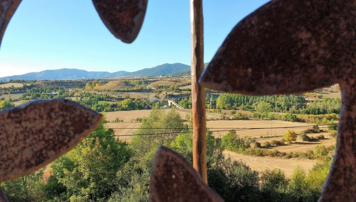 CEREAL. Campos de cultivo en La Jacetania. (FOTO: Rebeca Ruiz)