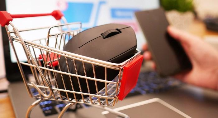 FORMACIÓN. Los próximos webinars de la Comarca de la Jacetania abordarán las ventas online.
