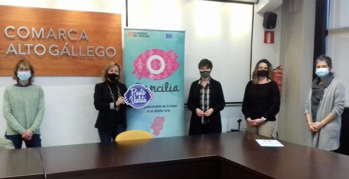 Un momento de la reunión para impulsar los nuevos puntos violeta de las bibliotecas del Alto Gállego. (FOTO: Comarca Alto Gállego)