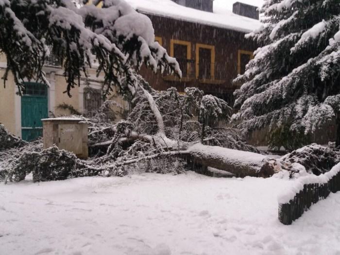 Intensa nevada en Jaca. (FOTO: Servicio de Emergencias del Ayuntamiento de Jaca)