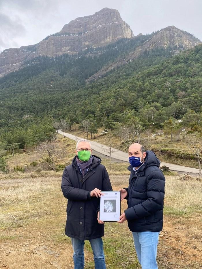 Proyecto de ordenación forestal del Monte Oroel.