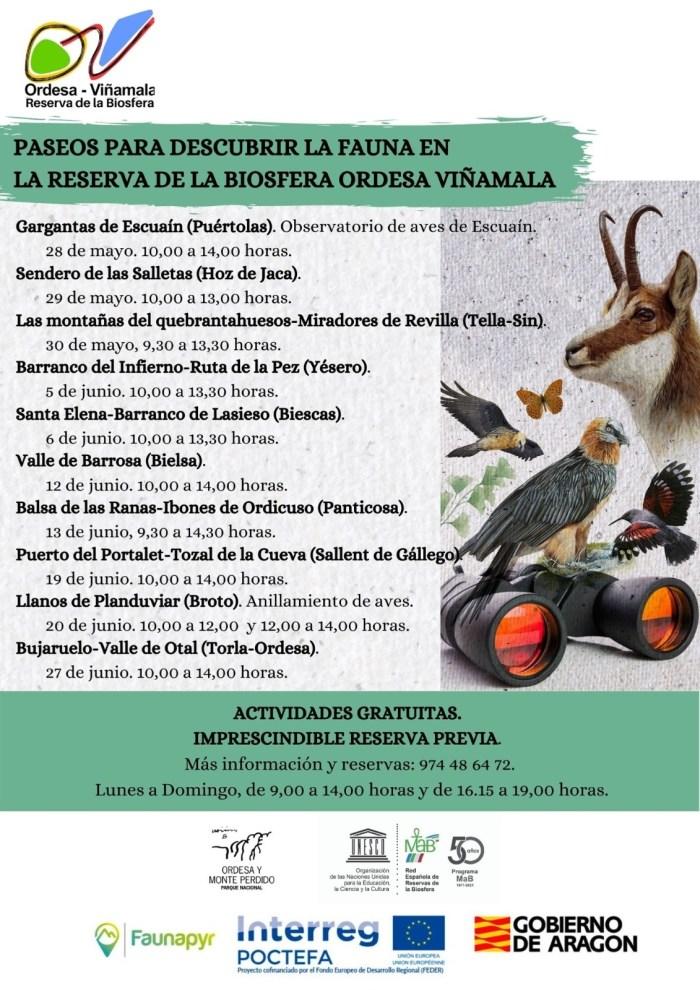Paseos por Biescas, Hoz, Yésero, Panticosa y Sallent para descubrir la fauna de Ordesa Viñamala