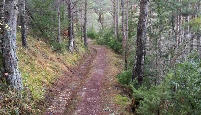 La Comarca de Jacetania acondicionará los senderos de una veintena de pueblos
