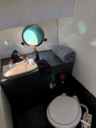 MS Zaandam toilet