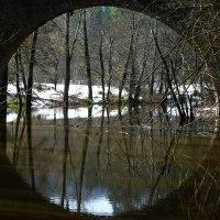 La Riera Major, escondida en la comarca de Osona