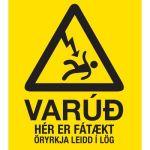 Þetta er staðreynd sem ekki má gleyma.
