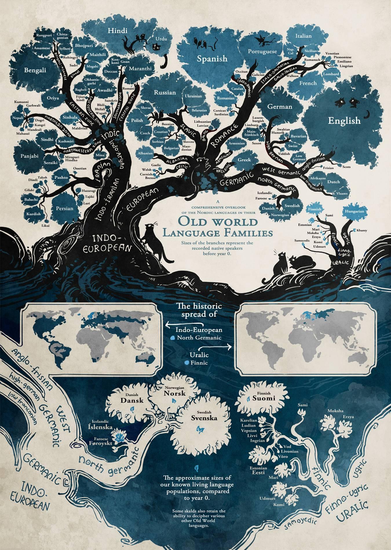 L Origine Des Langues Dans Un Arbre Genealogique Video