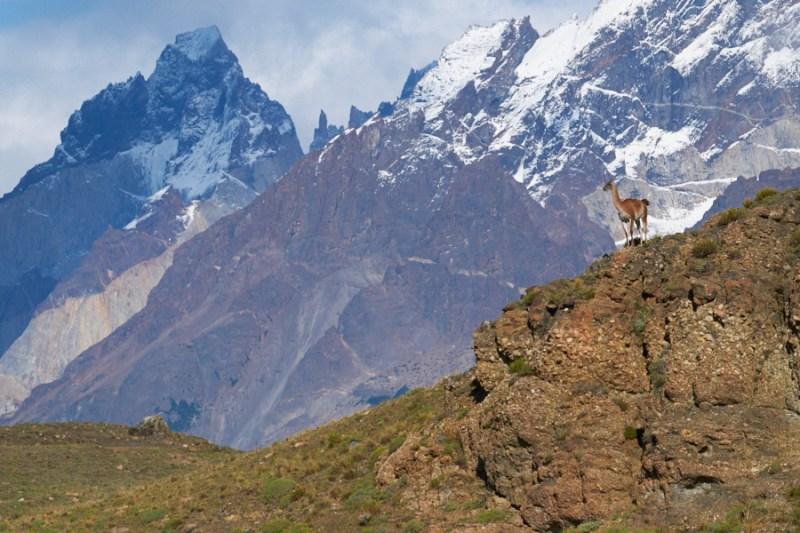 D'Ushuaia au P.N. Torres del Paine, Chili