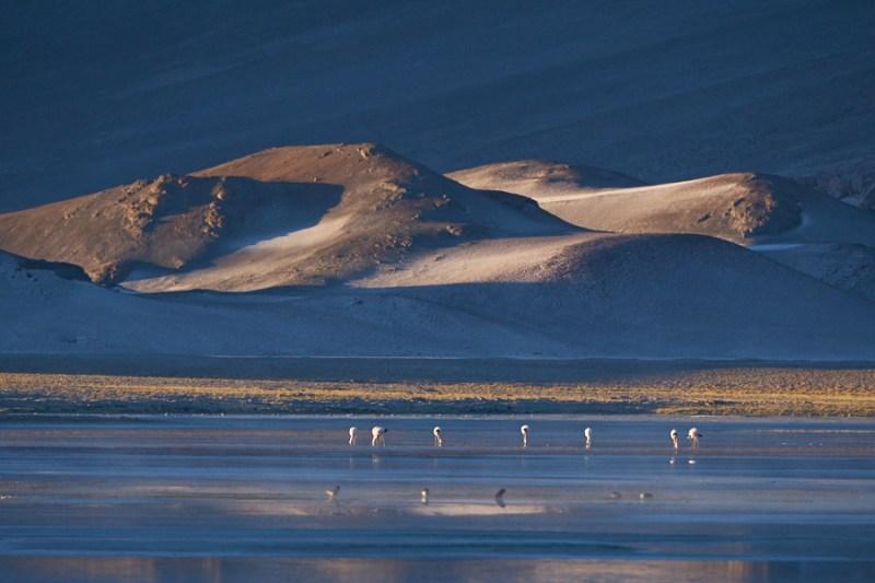 De Uyuni en Bolivie à San Antonio de los Cobres en Argentine