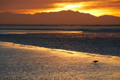 Coucher de soleil sur la lagune
