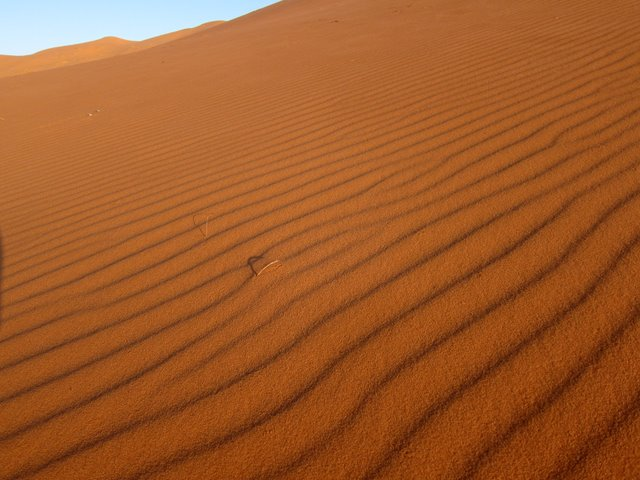 The dunes of Erg Chebby