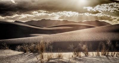 White Sands Gold