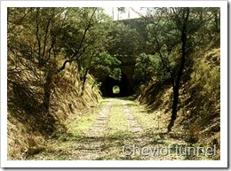 Cheviot tunnel