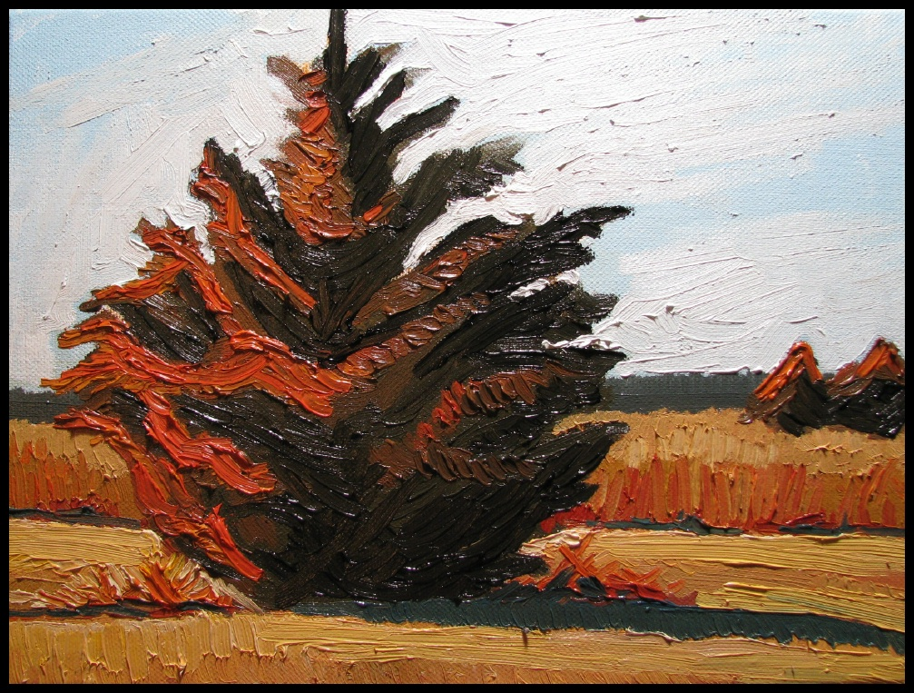 Western Red CedarAlone