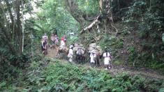 Trail traffic: locals carrying supplies for the groups on mules