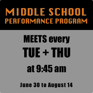 2020 MS Performance Program