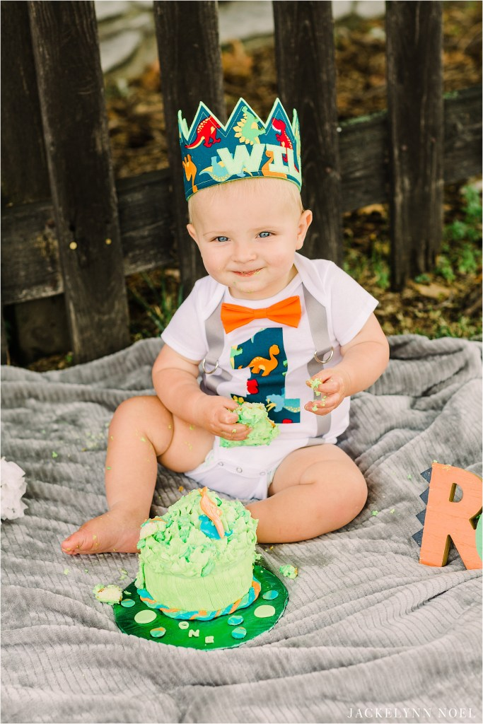 Will's Dinosaur themed first birthday