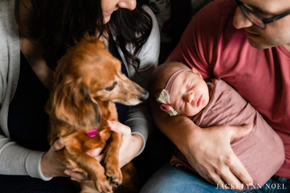 Lifestyle Newborn Photos by Jackelynn Noel Photography