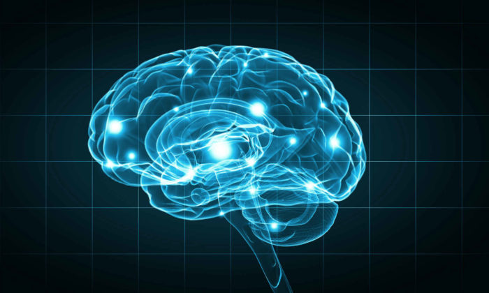 MS medication effecting the brain