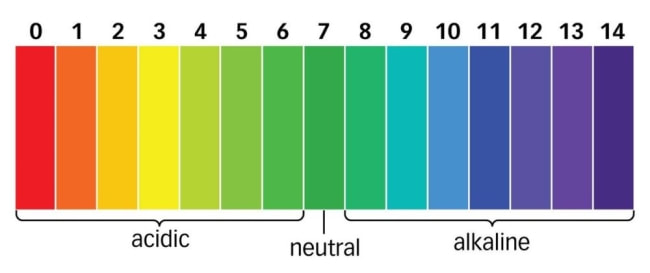 pH scale- pine needles are between 3.2-3.8