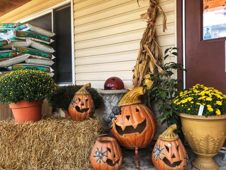 Fall Decorating Ideas - pumpkins, straw, mums, corn stalks