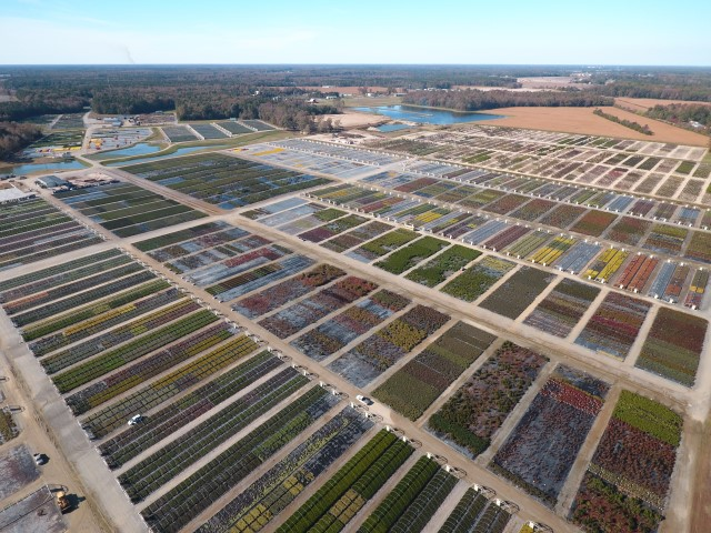 Bennett's Creek Nursery