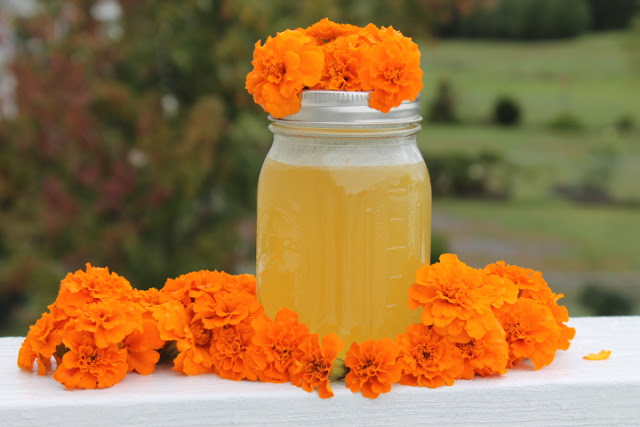 Edible Flowers- Marigold Jelly