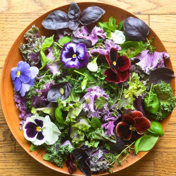 Edible Flowers- Pansy Salad