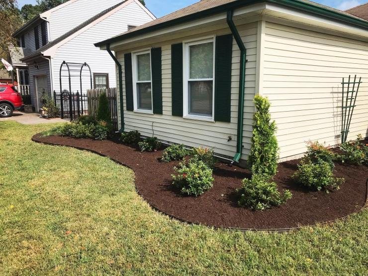 edging, plant, and mulch install
