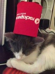 Rackspace cat fez
