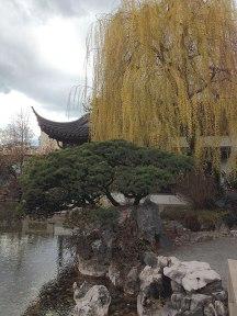 chinese-gardens10