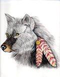 Orginal art by Jackie Popp (wolf) pencils