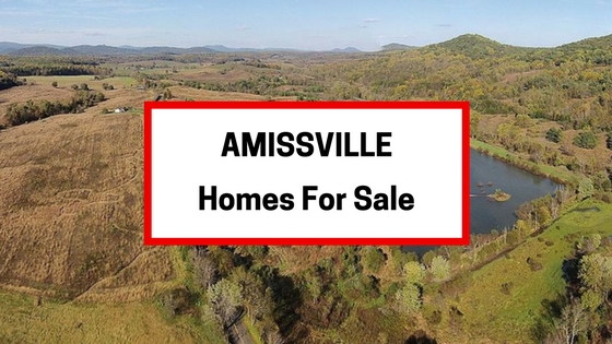 homes for sale amissville va