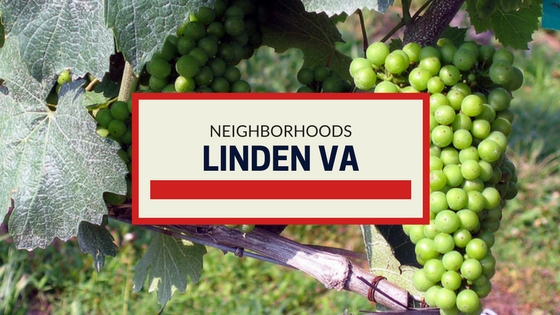 LINDEN VA NEIGHBORHOODS