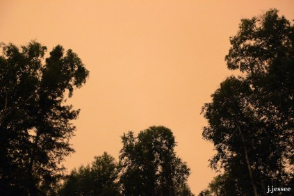 And another night I looked up to see an orange sky.